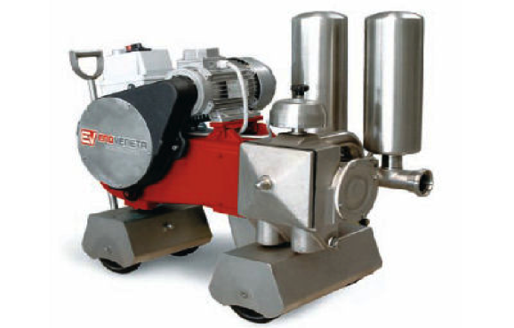 "PISTON PUMPS MODEL """"PST"""" AISI 316"